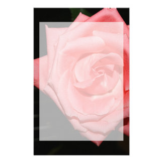 música color de rosa rosada de la parte posterior papeleria