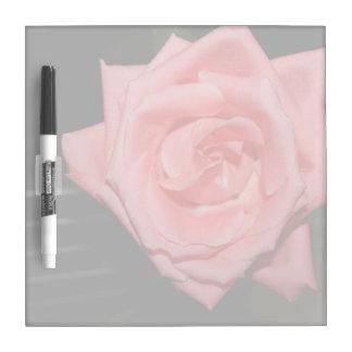 música color de rosa rosada de la parte posterior pizarra blanca