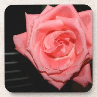 música color de rosa rosada de la parte posterior posavasos