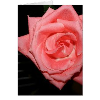 música color de rosa rosada de la parte posterior tarjeta de felicitación