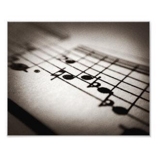 Música, magnificada cojinete