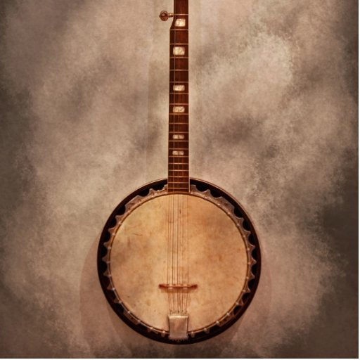 Música - secuencia - banjo fotoescultura vertical