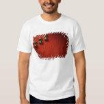 Musical Notes 6 T-shirts