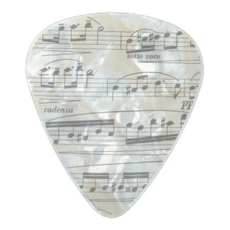Musical Notes guitar pick