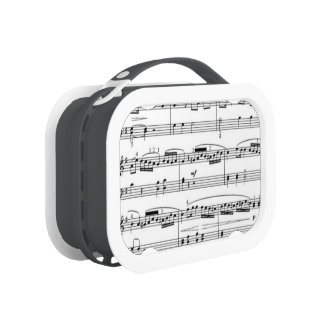 musical notes lunch box