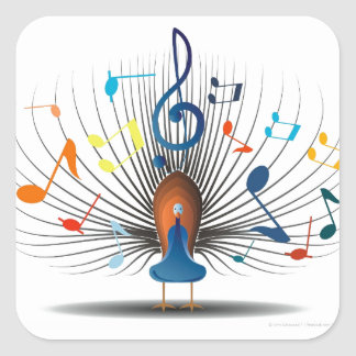 Musical Notes Peecock Square Sticker
