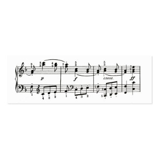 Musical Notes Profile Card Double-Sided Mini Business Cards (Pack Of 20)