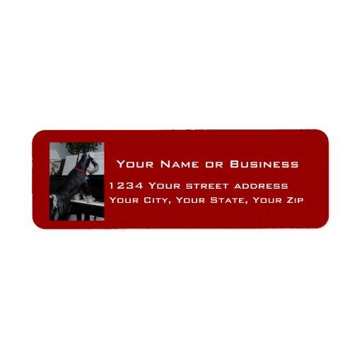 Musical Schnauzer Custom Return Address Labels