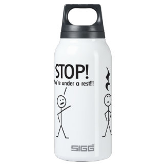 Musical 10 Oz Insulated SIGG Thermos Water Bottle
