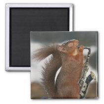 Musical Squirrel Magnet