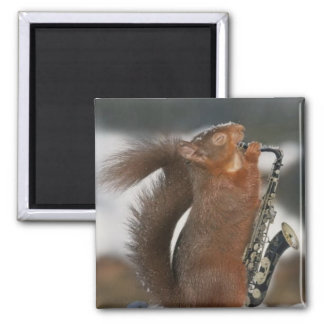 Musical Squirrel Magnet