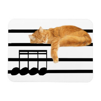 Musical tabby kitty cat rectangle magnets