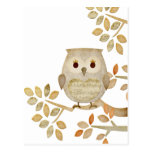 Musical Tree Owl Postcard