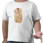 Musician playing the Pipes Tshirts