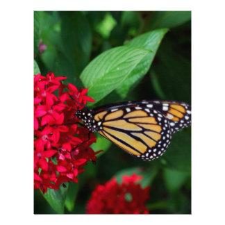 Musing Monarch Letterhead