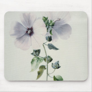 Musk Mallow, 18th century Mouse Pad