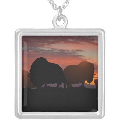Musk Ox Square Pendant Necklace