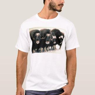 Musk Oxen T-Shirt
