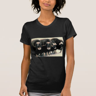 Musk Oxen T Shirts