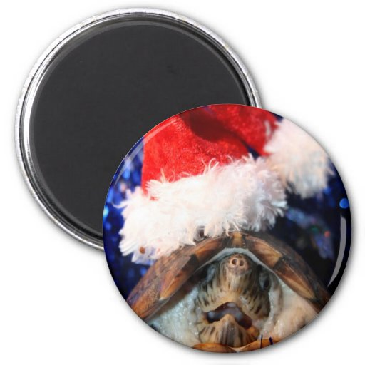 Musk Turtle Wearing Santa Hat Mouth Open Refrigerator Magnets