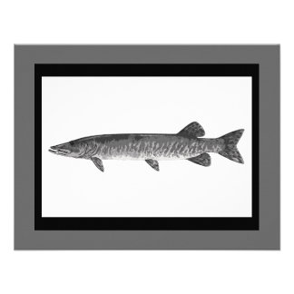 Muskie Fishing art Personalized Announcements