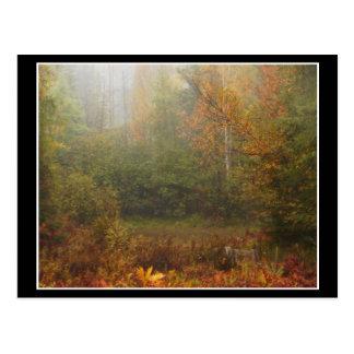 Muskoka Autumn Postcards