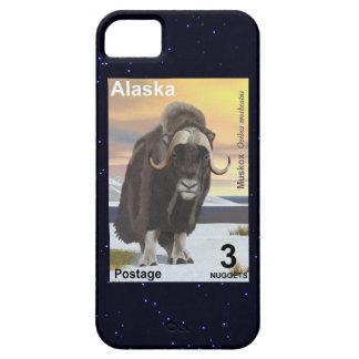 Muskox iPhone 5 Cases