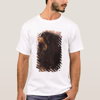 muskox, Ovibos moschatus, cow on the central T-Shirt
