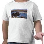 Muskox, vaca a lo largo de un río en el llano camisetas