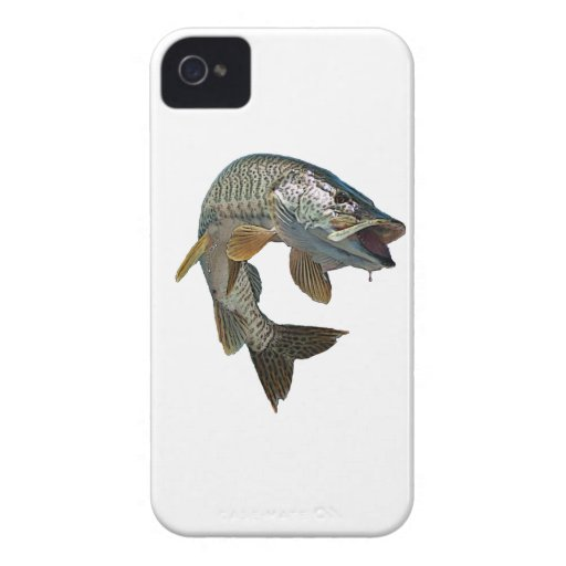 Musky 4 Case-Mate iPhone 4 cases