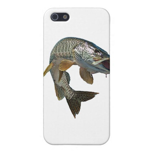 Musky 4 cases for iPhone 5