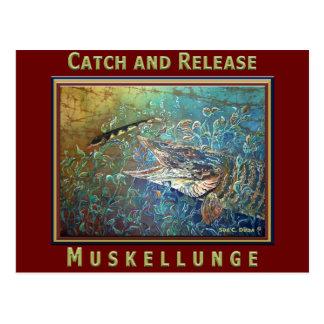 MUSKY C and R Postcard