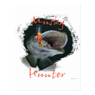 Musky Hunter Postcard