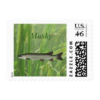 Musky Postage Stamp