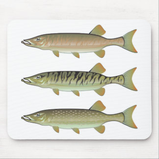 Musky Tiger musky and Northern Pike vector Mouse Pad