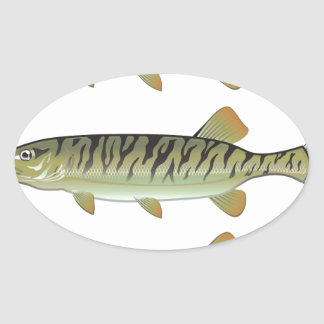 Musky Tiger musky and Northern Pike vector Oval Sticker