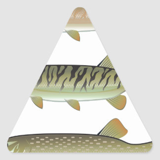 Musky Tiger musky and Northern Pike vector Triangle Sticker