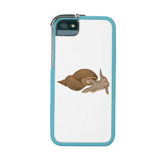 Mussel iPhone 5/5S Covers