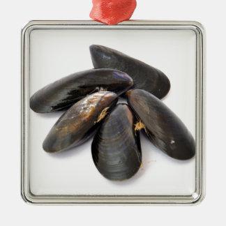 Mussel Metal Ornament