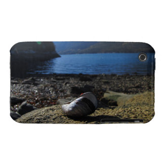 Mussel Shell Model iPhone 3 Cover