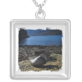 Mussel Shell Model Square Pendant Necklace