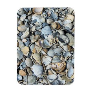 Mussel shells flexible magnet