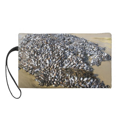 Mussels At The Cove Wristlet Purses