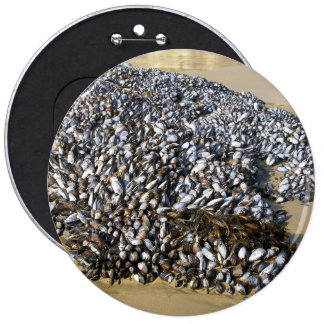 Mussels At The Cove Pinback Button