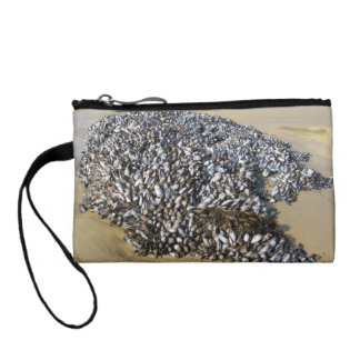 Mussels At The Cove Coin Purse