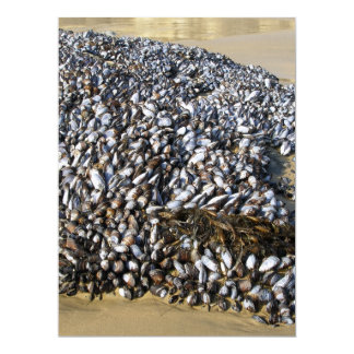 Mussels At The Cove 6.5x8.75 Paper Invitation Card