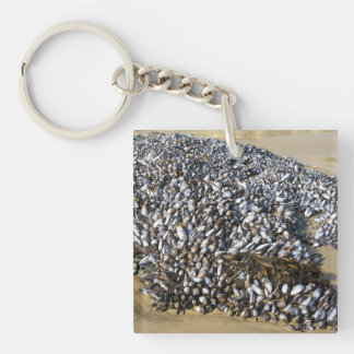 Mussels At The Cove Double-Sided Square Acrylic Keychain