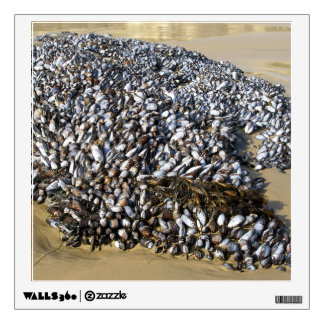 Mussels At The Cove Wall Sticker