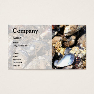 Mussels Business Card
