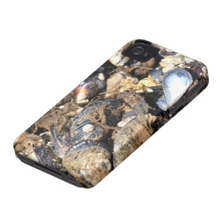 Mussels iPhone 4 Cover